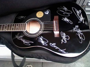 NASCARb drivers autograph guitar for breast cancer benefit.